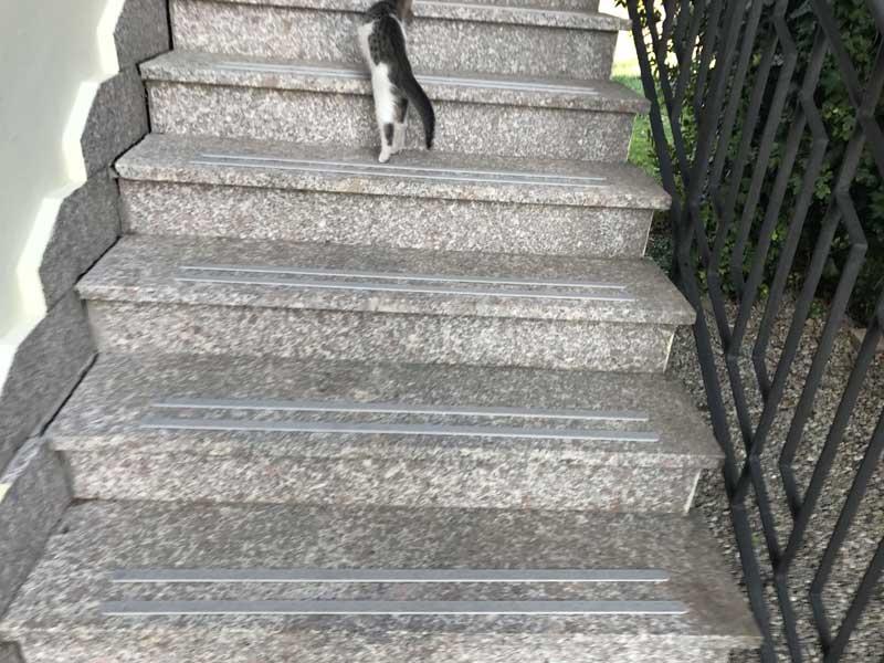 Strisce antiscivolo in gres porcellanato per pavimenti scale legno